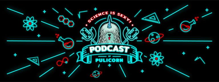 Interjú Suppan Mártonnal a Pulicorn podcastben